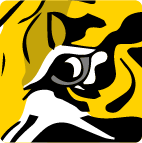 PUNT ROAD END | Richmond Tigers Forum